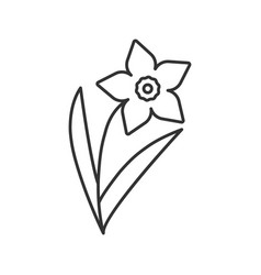 Narcissus jonquil linear icon garden spring vector