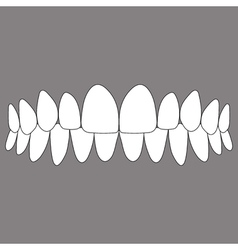 Occlusion front teeth vector