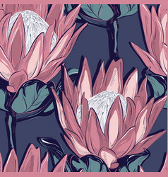 protea seamless pattern design hand-drawn flower vector image
