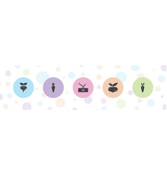 Root icons vector