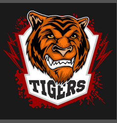 Tigers mascot - sport team vector