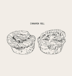 traditional homemade cinnamon rolls sketch vector image