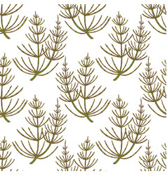 Colored equisetum pattern in hand drawn style vector