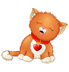 cute cartoon kitten wearing a red collar with hear vector image