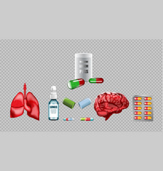 digital red medicine lungs vector image