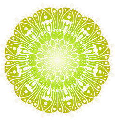 flower color mandala vector image