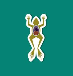 Paper sticker on stylish background frog biology vector
