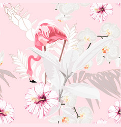 pink flamingo graphic palm leaves ficus vector image