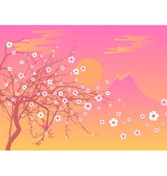 sakura and fuji vector image