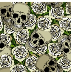 Seamless pattern with skulls and white roses vector image