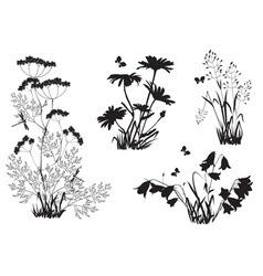 Silhouettes flowers and herbs vector