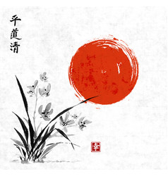 wild orchid and red sun on meadow vector image vector image
