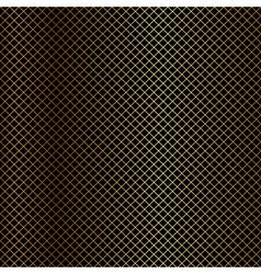 gold net on black background vector image vector image