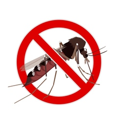 No Mosquito sign vector image