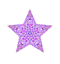 Colorful abstract floral ornament star symbol vector