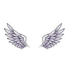 drawn wing angel wings with feathers elements vector image