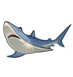 great blue shark isolated on white background vector image