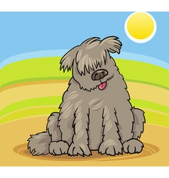 newfoundland dog cartoon vector image