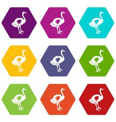 ostrich icon set color hexahedron vector image