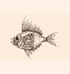 steampunk style fish vector image