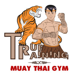 True training 1 color thai boxer and tiger vector