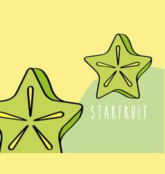 carambola fruit tropical fresh natural on colored vector image