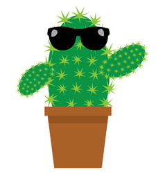cartoon cactus vector image