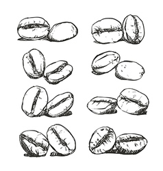 Coffee bean Hand drawn sketch vector image