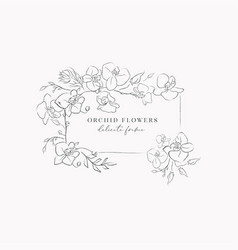 Line drawing orchid flower frame wreath vector