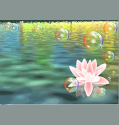 lotus and bubbles vector image