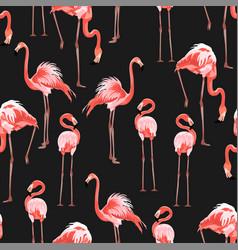 Pink flamingo black background vector