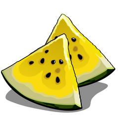 set slices ripe yellow watermelon element vector image