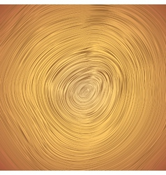 Wood texture of cutted tree trunk vector image