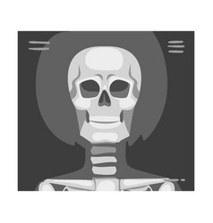 X-ray film front viewed skull vector