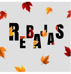 autumn sale banner with leaf transparent vector image