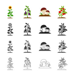 Meadow forest plot and other web icon in cartoon vector