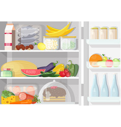 Opened refrigerator with shelves full of various vector