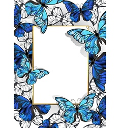 Rectangular Banner with Butterflies Morpho vector image