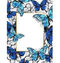Rectangular Banner with Butterflies Morpho vector