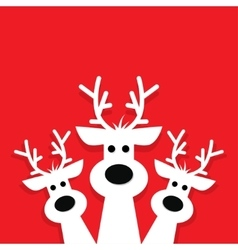 Three white reindeer on a red background vector