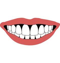 smile front teeth vector image