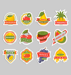 fruits logo badges template icons vector image