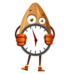 almond hiding behind big clock on white vector image