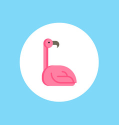 flamingo icon sign symbol vector image