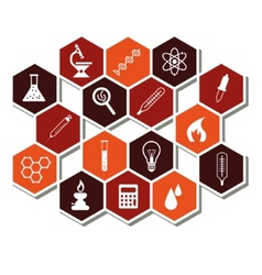 Laboratory icons vector