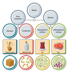 pure substances and mixtures diagram vector image