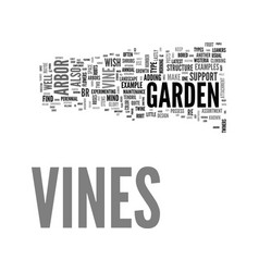 a guide to vines and how to vine beauty with your vector image