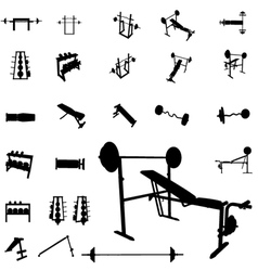 bodybuilding equipment vector image vector image