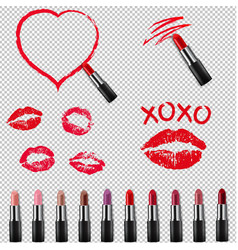 colorful lipstick collection isolated transparent vector image