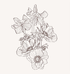 hand drawn summer vintage beige bouquet vector image